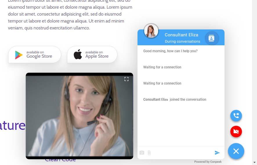 oprogramowanie call center conpeek umożliwia kontakt przez stronę www